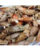 Comprar bocas de cangrejo crudas o cocida online en la nuestra tienda